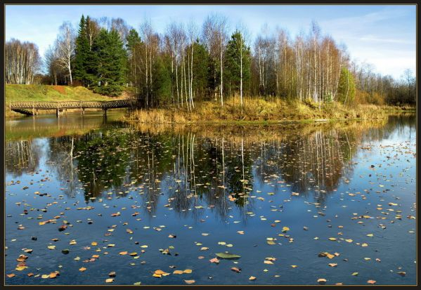 Октябрь уж наступил — уж роща отряхает Последние листы с нагих своих ветвей;
