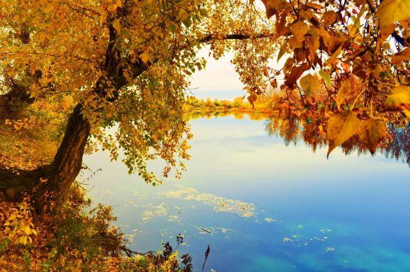 Стихи Бориса Леонидовича Пастернака про осень