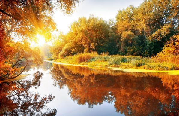 Николай Глазков Сентябрь 1 Сентябрь, он осени начало… А может, продолженье лета? В такую пору не печалью, А радостью душа согрета.