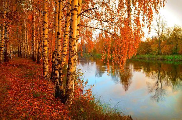 Стихи Ивана Алексеевича Бунина про осень