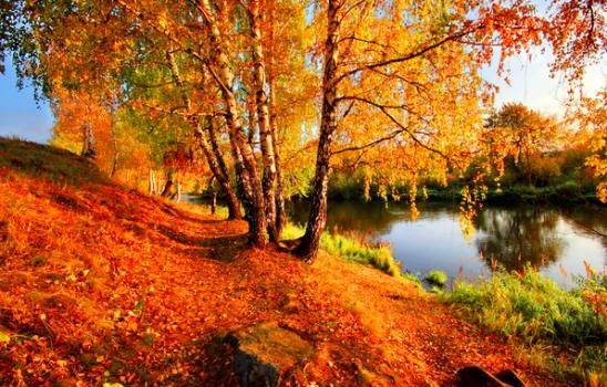 Шестнадцать строк об октябре — о том, что иней на заре прошёл по листьям сединой, о том, что лето за спиной. Шестнадцать строчек о тоске — о том, что брошен на песке обломок лёгкого весла, о том, что молодость прошла. И вдруг, наперекор судьбе, шестнадцать строчек о тебе, о том, что с давних пор не зря ты любишь ветры октября! Шестнадцать строчек… Я живу. Дубовый лист упал в траву. Песок остыл. Ручей продрог. А я живу!.. Шестнадцать строк.
