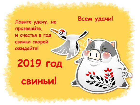 Поздравления в картинках на 2019 Новый Год свиньи