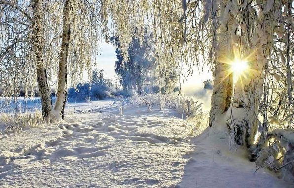 Иосиф Бродский Откуда к нам пришла зима, не знаешь ты, никто не знает.