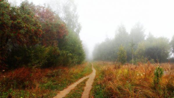Афанасий Фет ~ Осень (