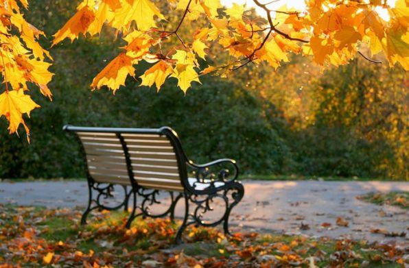 Юнна Мориц Сентябрь Этот сад одинокий, он слышал о нас, Потому что он тянется к нам, И не он ли в дождливые окна сейчас Окликает нас по именам?