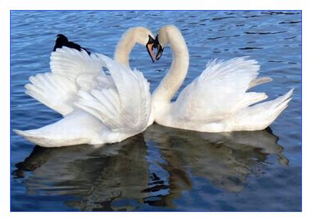 Крылья любви медодия и исполнение